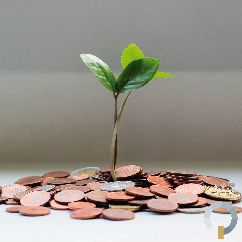 Como melhorar a gestão financeira da sua empresa